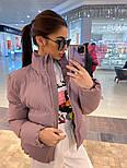 Женская короткая демисезонная куртка бомбер на молнии с воротником стойкой 7101258, фото 2