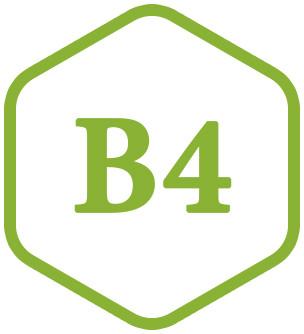 B4 (Холин)