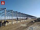 Ангар 20х72х5 склад, 1440 кв.м. каркас,зерносховище, новий, фото 4
