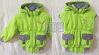 Куртка безрукавка жилетка р 80 (86) 9-12 месяцев весна осень для девочки детская весенняя осенняя 3395 Салатов