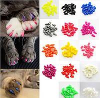 Антицарапки для кошек, XS/ 0-2.5кг,  цвет в ассортименте
