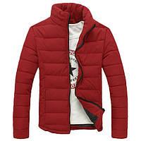 Мужская Дутая куртка без капюшона бордо (синтепон 250, зима)
