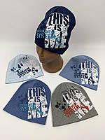 Детские польские демисезонные трикотажные шапки для мальчиков оптом, р.42-44 Fido (f978), фото 1