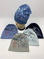 Детские польские демисезонные трикотажные шапки для мальчиков оптом, р.46-48, 50-52 Fido (f988), фото 1