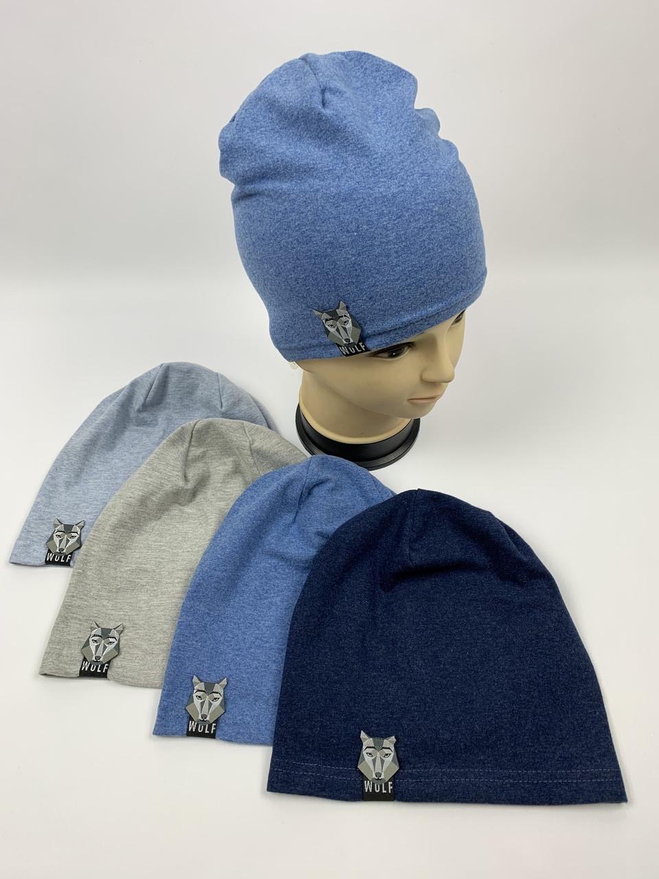 Детские польские демисезонные трикотажные шапки для мальчиков оптом, р.46-48, 50-52 Fido (f836)