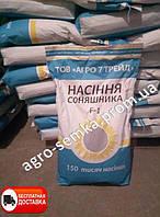 Семена подсолнуха ЛАССА. НОВИНКА!!!              под Евро-лайтинг от производителя/насіння соняшника Ласа