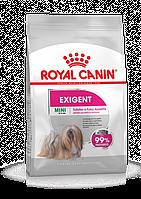 Royal Canin (Роял Канин) Mini Exigent сухой корм для собак малых пород, 2 кг