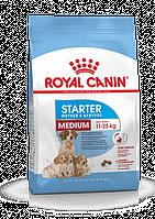 Royal Canin (Роял Канин) Medium Starter первый твердый корм для щенков средних пород, 1 кг