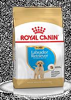 Royal Canin (Роял Канин) Labrador Retriever Puppy корм для щенков лабрадора ретривера до 15 месяцев, 12 кг