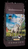 Landor Puppy Large Breed сухой корм для щенков крупных пород от 1 до 18 месяцев с ягненком,  3 кг