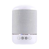 Портативная Bluetooth колонка T&G 115 Silver
