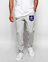 Футбольные штаны Сборной Франции, France, Найк