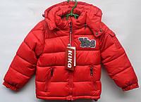 Демисезонная куртка для мальчика 3-6 лет модель - 2814