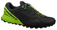 Кроссовки Dynafit Alpine Pro мужские для бега Чёрный (45)
