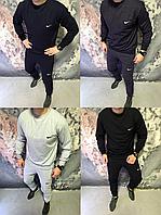 Мужской спортивный костюм Nike со свитшотом (лого вышивка)
