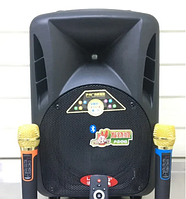Портативная аккумуляторная колонка с 2 микрофонами Langting SL-1007