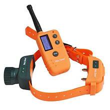 Электронный ошейник Petaliner PET910-2 для собак Оранжевый (100012)