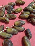 Фініки Алжир на гілці 1 кг в упаковці, фото 6