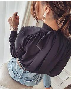 Класична блуза жіноча з бантом ззаду шифонова