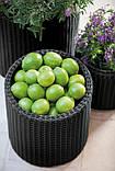 Цветочный горшок Keter S + M + L Cylinder Planters, фото 4