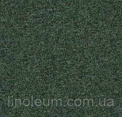 Tessera basis 386 foliage
