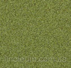 Tessera basis 388 meadow