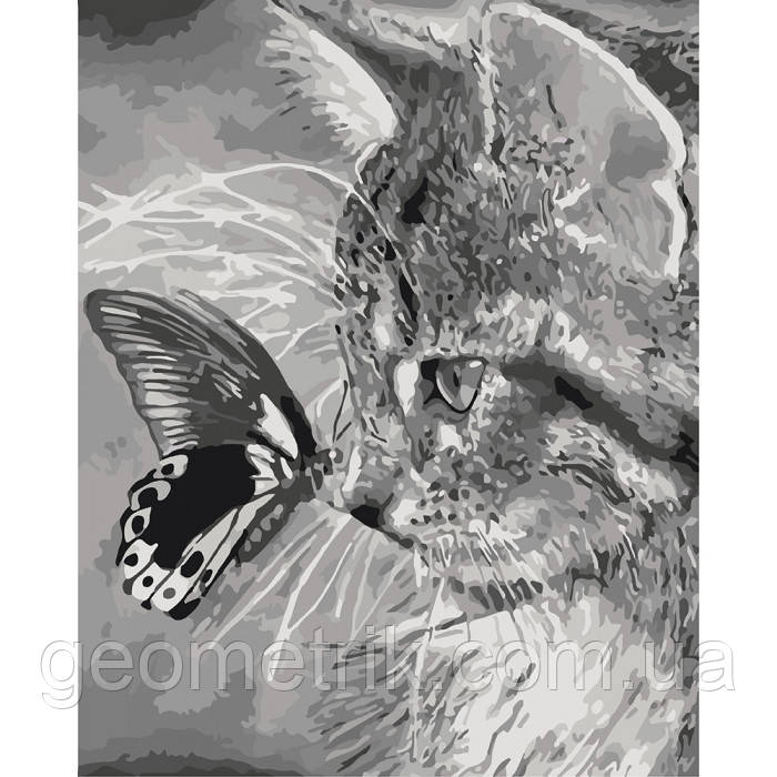 Картина за номерами. Кошеня і метелик 40х50см арт. КНО2499