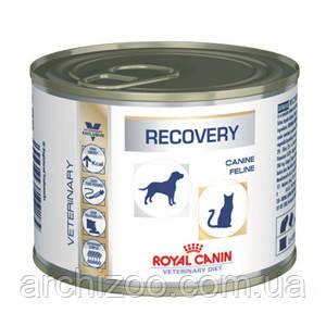Royal Canin Recovery 12шт*195г-консерва Диета для собак и кошек в восстановительный период после болезни