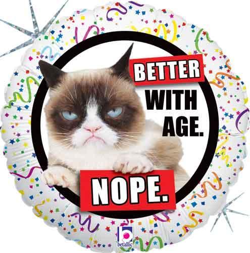 """BT 18"""" Похмурий Кіт Чим старше тим краще? Ні., в УП"""