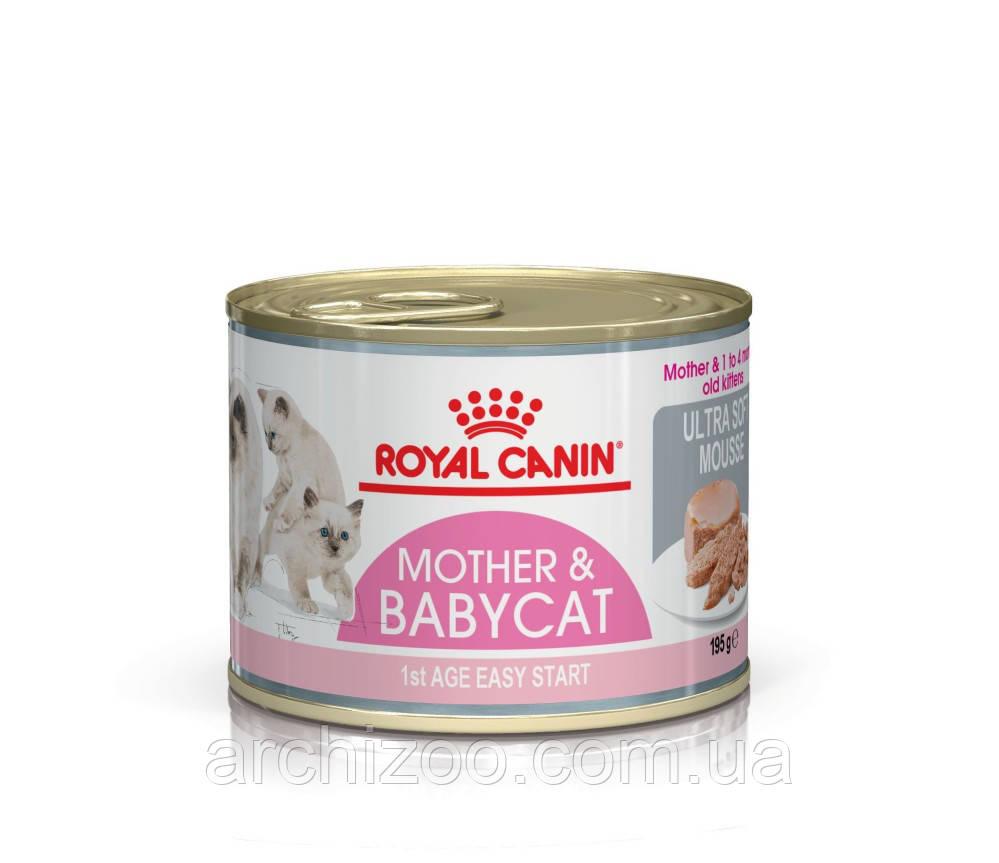 Royal Canin Babycat Instinctive 195г мусс для котят до 4 месяцев