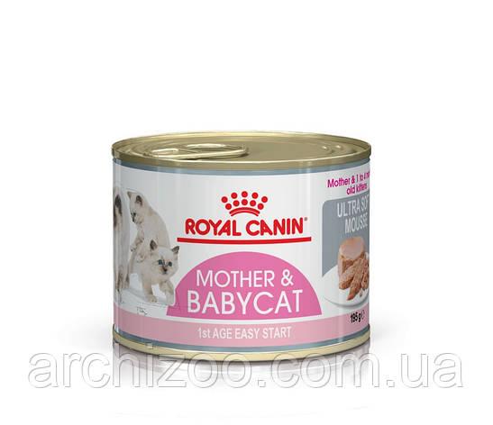 Royal Canin Babycat Instinctive 195г мусс для котят до 4 месяцев, фото 2