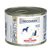 Royal Canin Recovery 12шт*195 гр восстановительный период после болезни