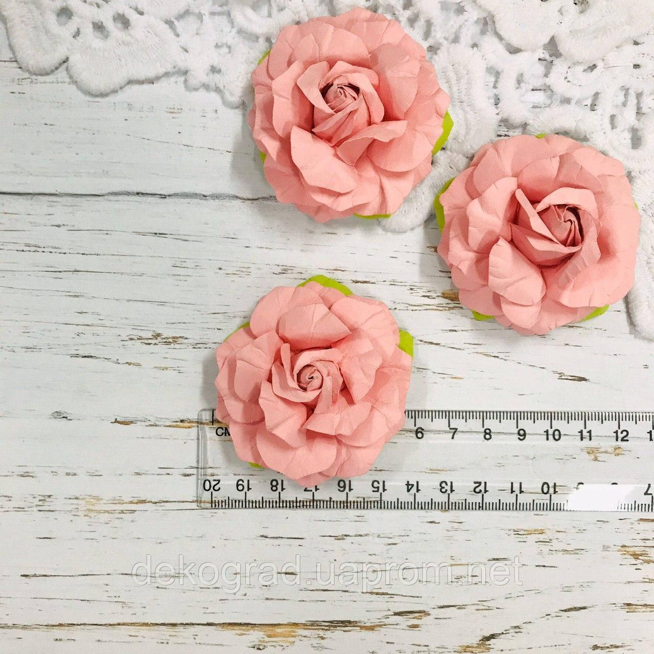 Роза розовая ДГ