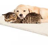 Лежаки, мягкие места, домики и матрасы для собак и котов