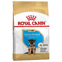 Royal Canin German Shepherd Puppy - корм для щенков породы немецкая овчарка до 15 месяцев 3 кг, фото 1