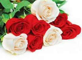 """Пакет для подарка гигант горизонтальный """"Белые и красные розы"""" 47х30 см  (6 шт/уп)"""
