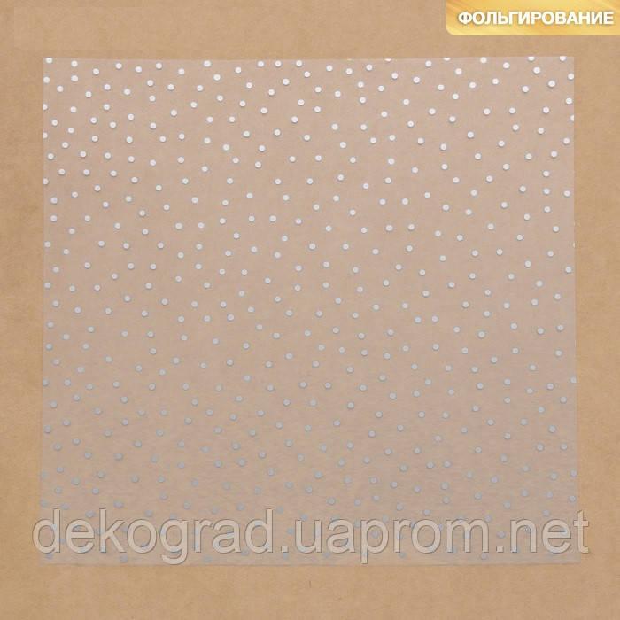 Ацетатный лист с фольгированием «Серебряный горошек», 30,5 × 30,5 см