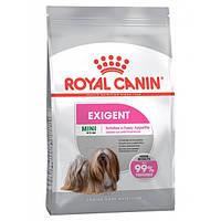 Royal Canin Mini Exigent - корм для собак дрібних порід вибагливих у харчуванні з 10 місяців 1 кг