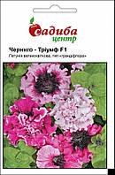 Петуния крупноцветковая фиолетово-белая Черниго Триумф F1, семена петунии в профупаковке 100 гранул, фото 1