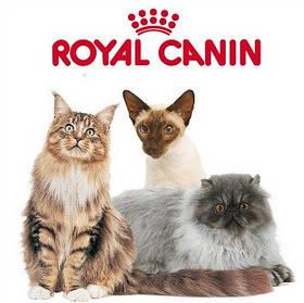 Royal Canin супер преміум корм для кішок. Франція