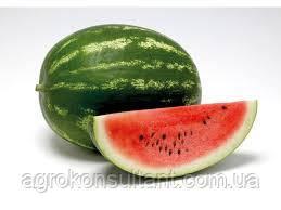 Насіння кавуна Кримсон Світ/Lark seeds(100г НА ВАГУ) — середньоранній сорт з округлими смугастими плодами