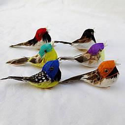 Птичка муляж