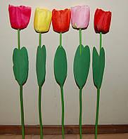 Розница 1 01-91 Тюльпан одиночный  8х60 см