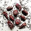 Морская поликарбонатная форма для шоколадных конфет