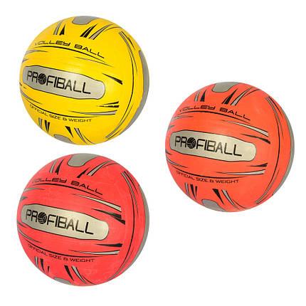 Мяч волейбольный PROFI VA 0042 сетка игла, фото 2