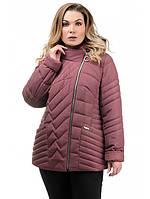 Демисезонная женская куртка модная интернет магазин размеры 50-56