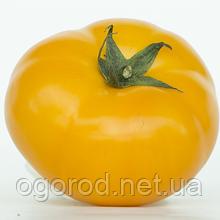 Нукси(KS 17 F1) 10 шт семена томата низкорослого Kitano Голландия