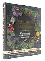 Глорія Лесная кладовая Справочник лекарственных растений