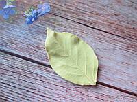 """Молд """"Лист яблони"""" (р-р 6,8 х 4 см)"""
