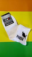 Носки IFlex с приколами на подарок с интересными надписями Лаваш Дольки кабана Пумба подарочные носки